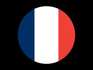 ThinkGizmos France